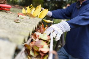 5 Roofing Repair Tips For Summer